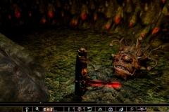 Neverwinter-Nights-Enhanced-Edition-2