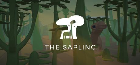 The Sapling v13.02.2020